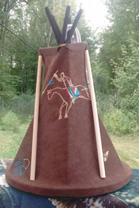 Tipi-Brown-Horse